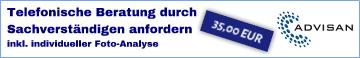 Telefonische_Beratung_anfordern